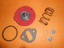 FORD CORTINA Mk1 & Mk2 1962-1970(AC DELCO TYPE)FUEL PUMP REPAIR KIT with spring